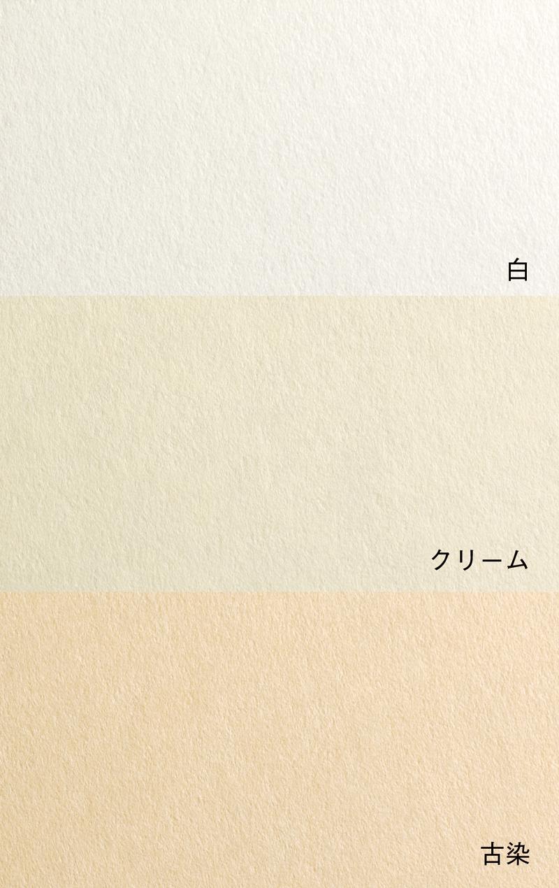 新鳥の子紙(拡大写真)
