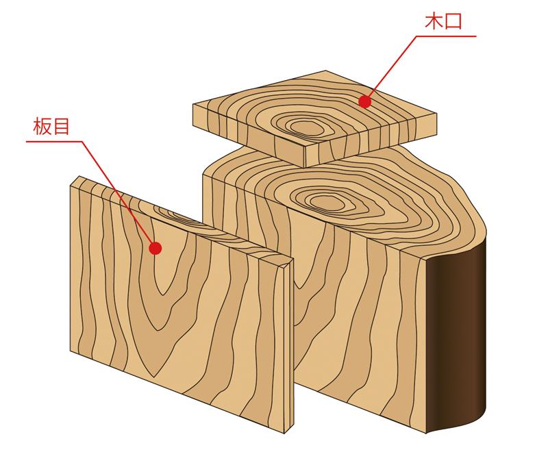 板目と木口