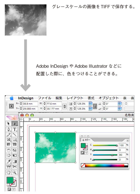 TIFFは、グレースケールの画像にDTPソフトウェア上で 色をつける場合によく利用される。