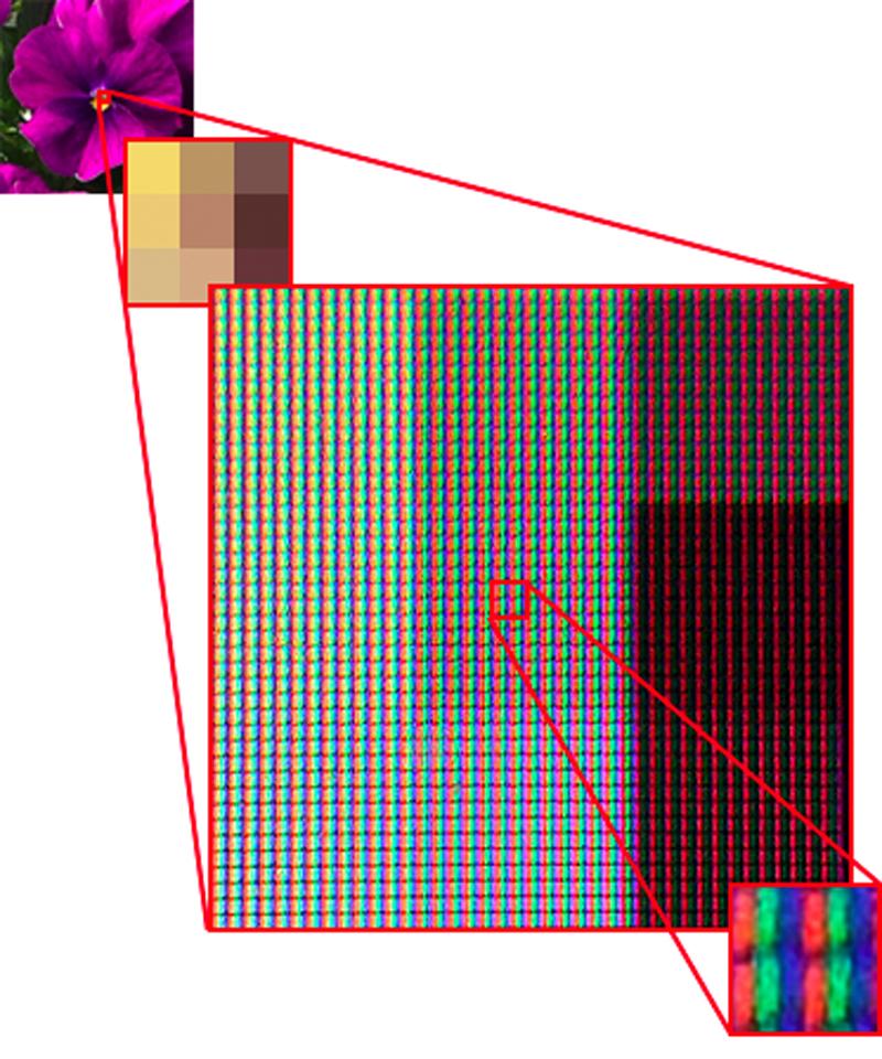 モニタの表示解像度は、縦横のドット(ピクセル)数で示され、変更することが可能である(例:800×600や1024×768)。 対してモニタの物理的なドット数(RGBのドット数)はモニタによって決まっている。 モニタをルーペで見ると、RGBのドットを見ることができる。 上図はモニタ上に画像データを拡大表示し接写したもの。 1つのピクセルが複数のRGBのドットで描かれている様が見てとれる。