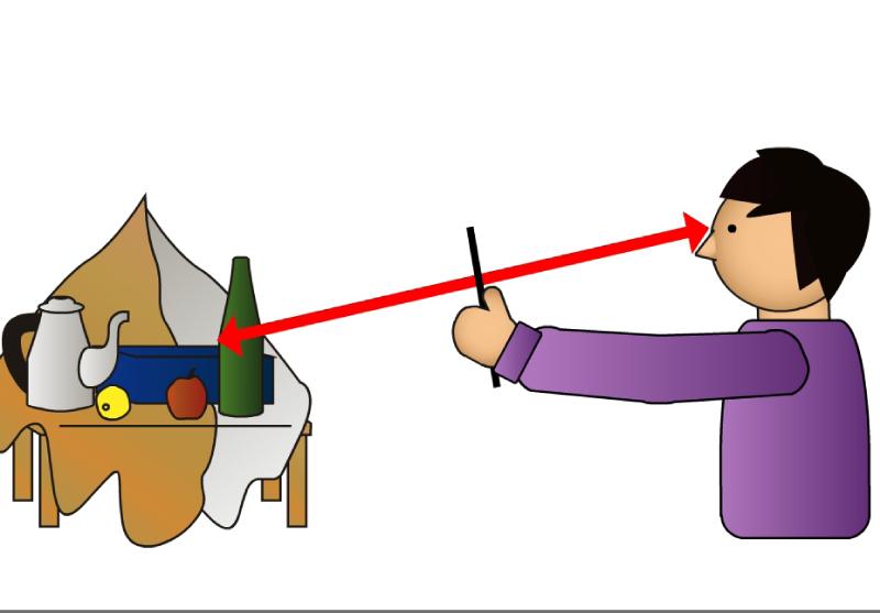 手順2. モチーフと作者の距離は一定に保ち、片方の目で観察します。腕は真っ直ぐに水平に伸ばします。